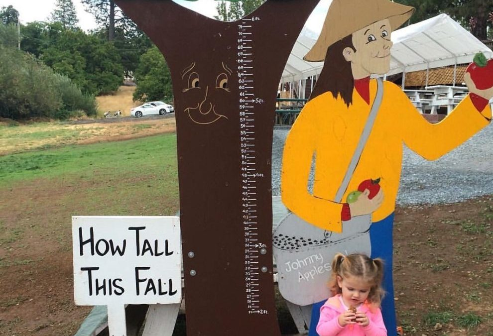 Johnny appleseed how tall sign