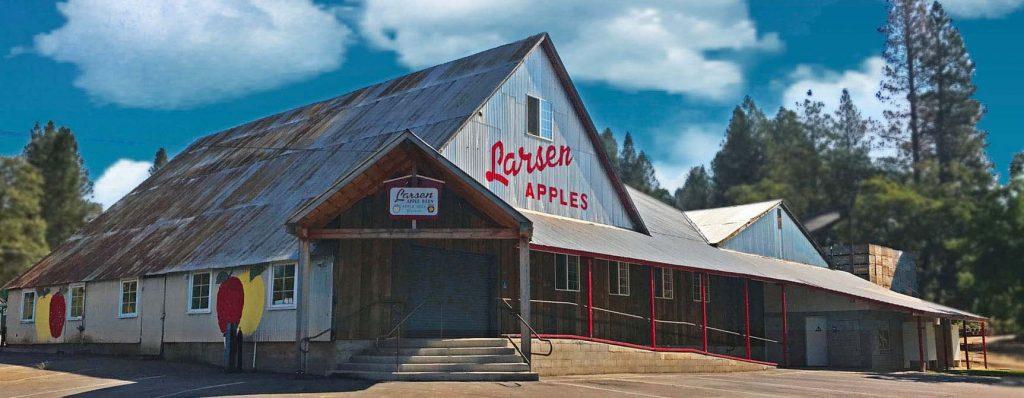 larsen apples